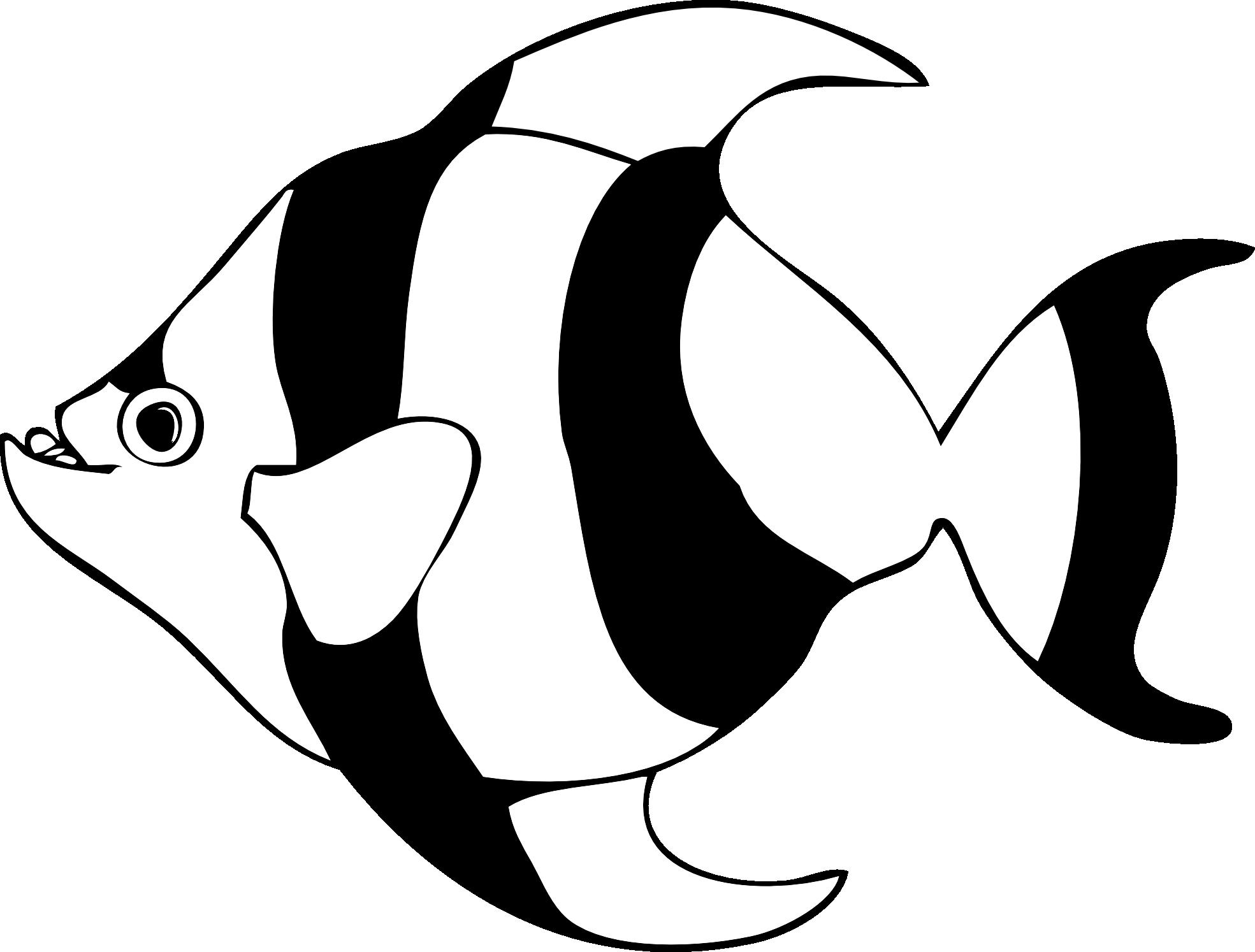 fish clipart white - photo #13