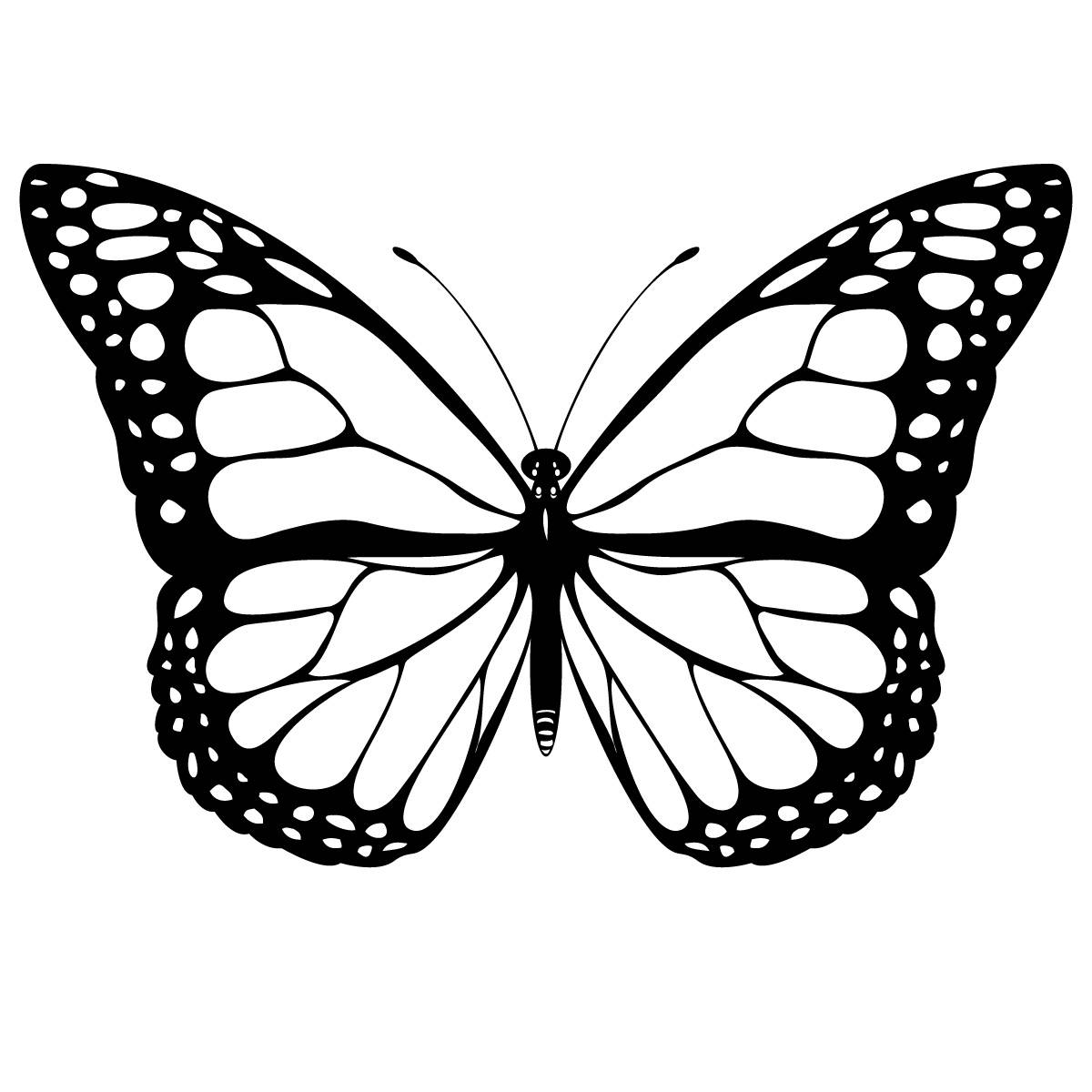 Line Drawing Of Butterfly : Butterfly line art cliparts