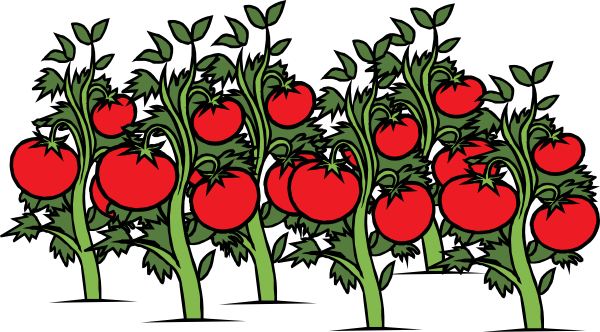 Clearer Tomato Patch clip art - vector clip art online, royalty ...