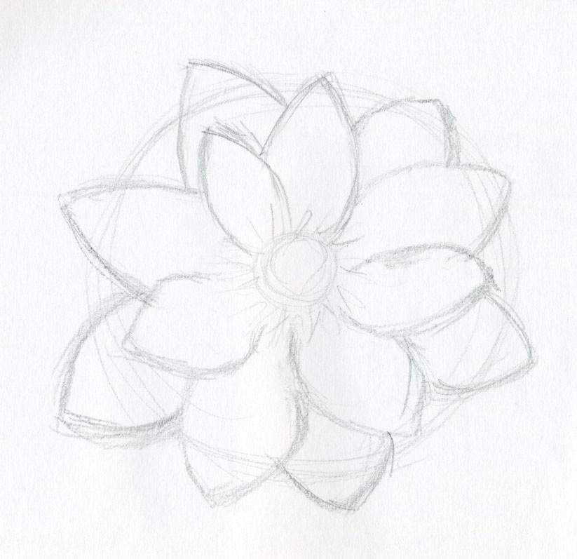 How To Draw A Beautiful Flower Step By Step Flowers Healthy