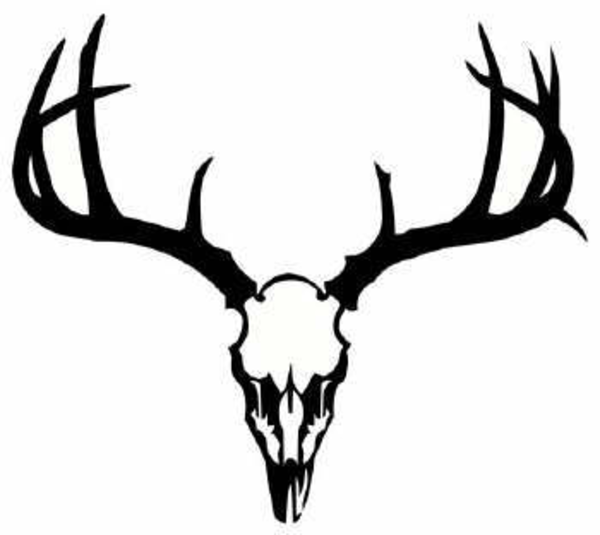 Buck Deer Clip Art - Cliparts.co