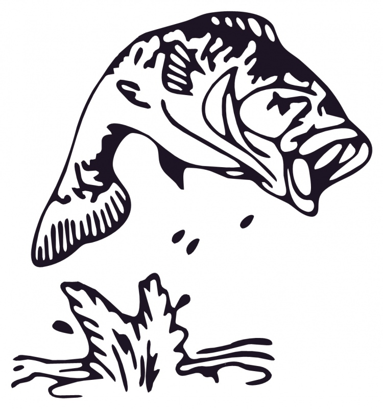 fish clipart drawing - photo #15