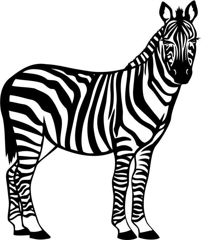 Line Drawing Zebra : Free clip art zebra cliparts