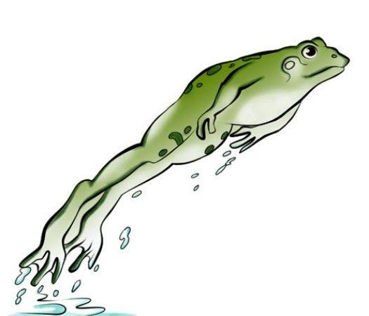 Frog Clip Art Images | Animal Vista