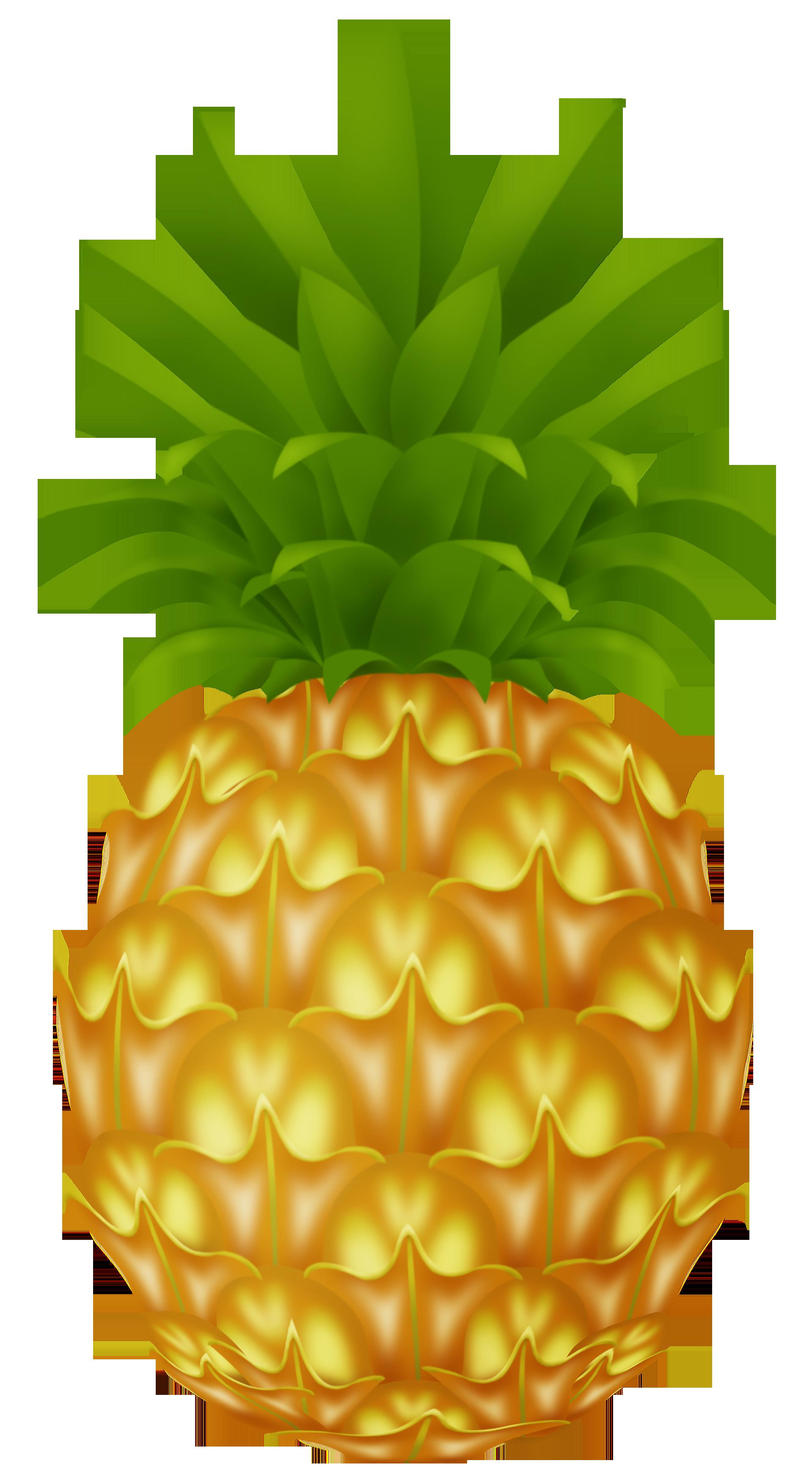 cartoon pineapples cliparts co pineapple clipart jpg pineapple clip art outline