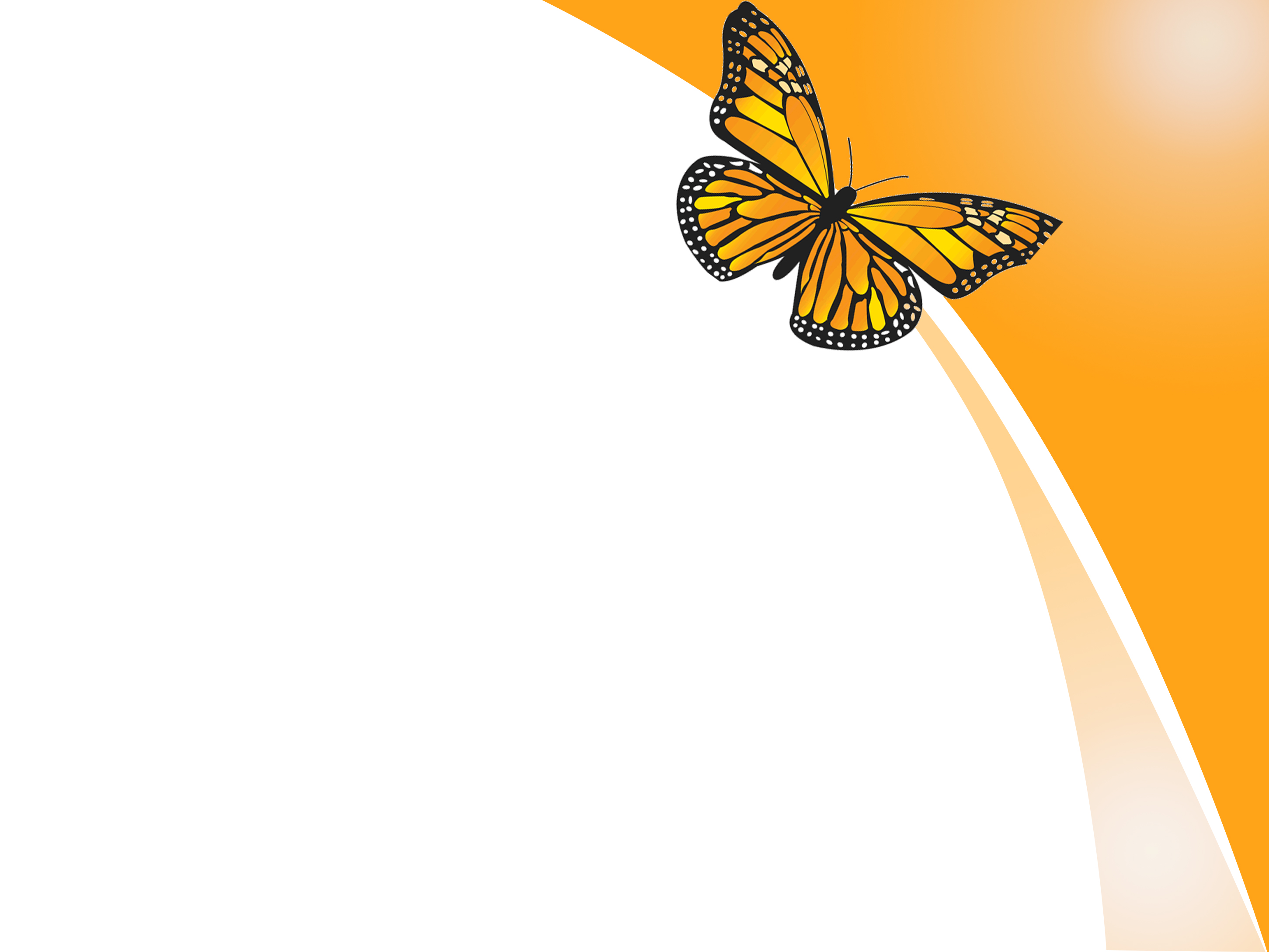 butterfly background images clipartsco