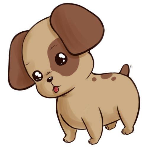 wwwohpuppylovecom Dog Breedsmorkie shorkie maltipoo