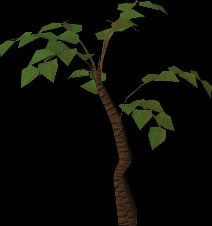 free clipart jungle trees - photo #24