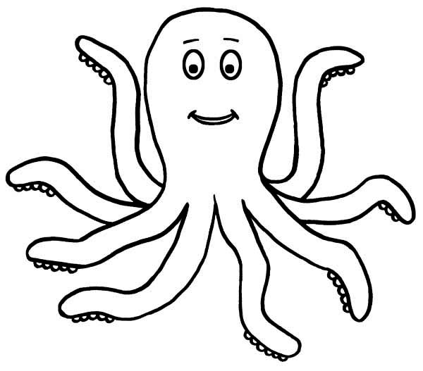 Octopus Outline Cliparts Co Coloring Pages Of Octopus