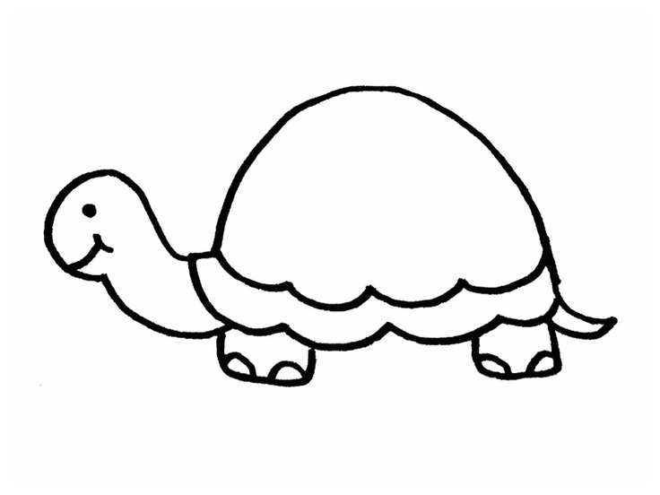 Turtle Outline - Cliparts.co