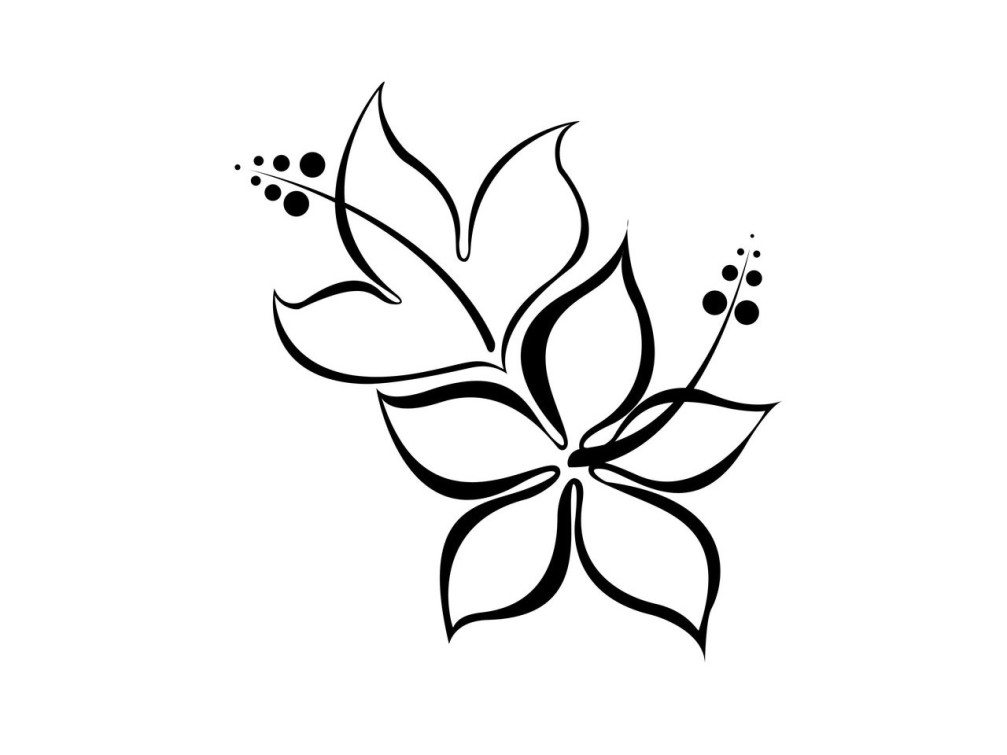 Hawaiian Flower Line Drawing : Black white flower tattoos cliparts