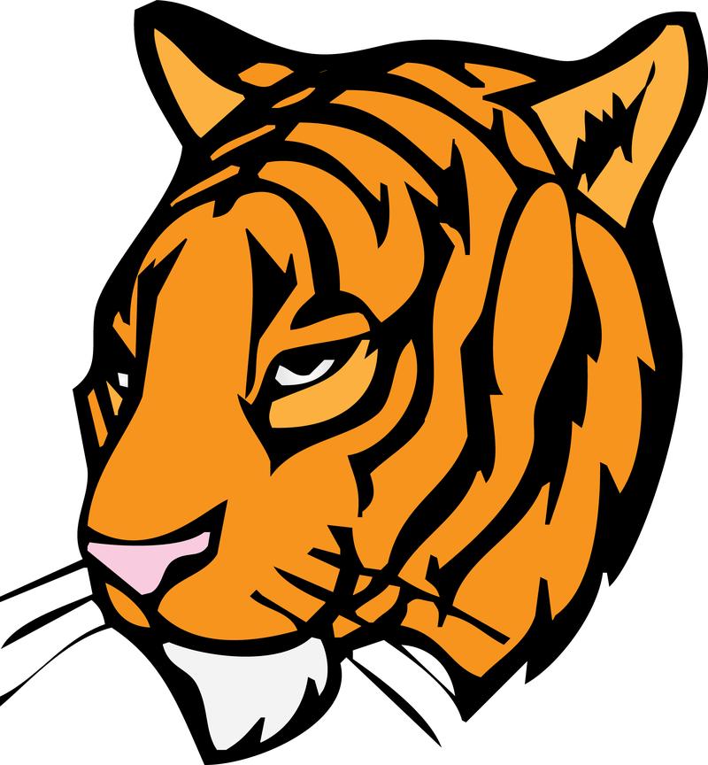 free tiger head clip art - photo #18