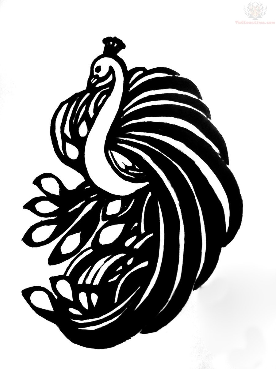 Peacock Feather Drawing Outline - Gallery - Cliparts.co