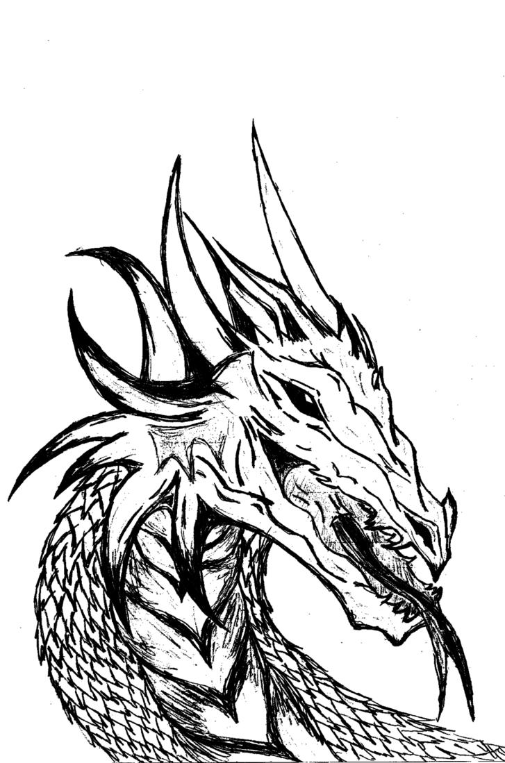 Dragon black and white cliparts co