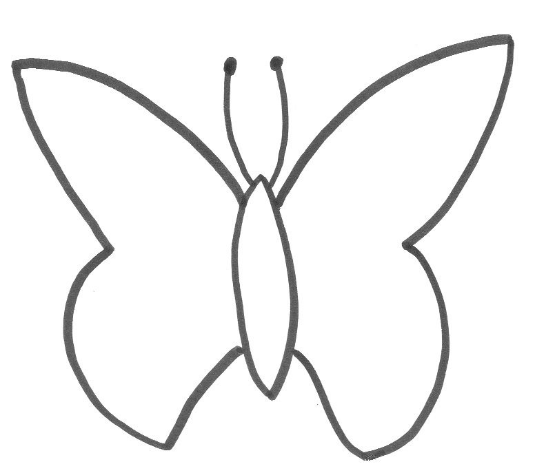 Monarch butterfly outline for Butterfly template free