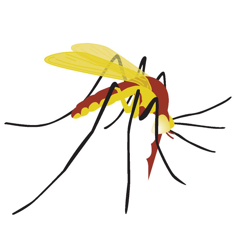 Mosquito Clip Art - Cliparts.co