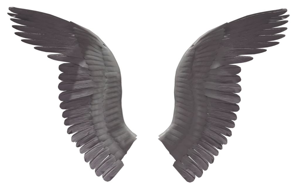 Angel wing (3) by wolverine041269 on deviantART