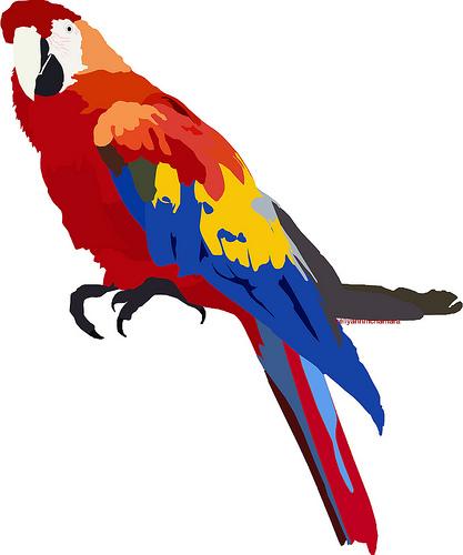 Parrot Cartoon Pictures Parrot Cartoon Flickr
