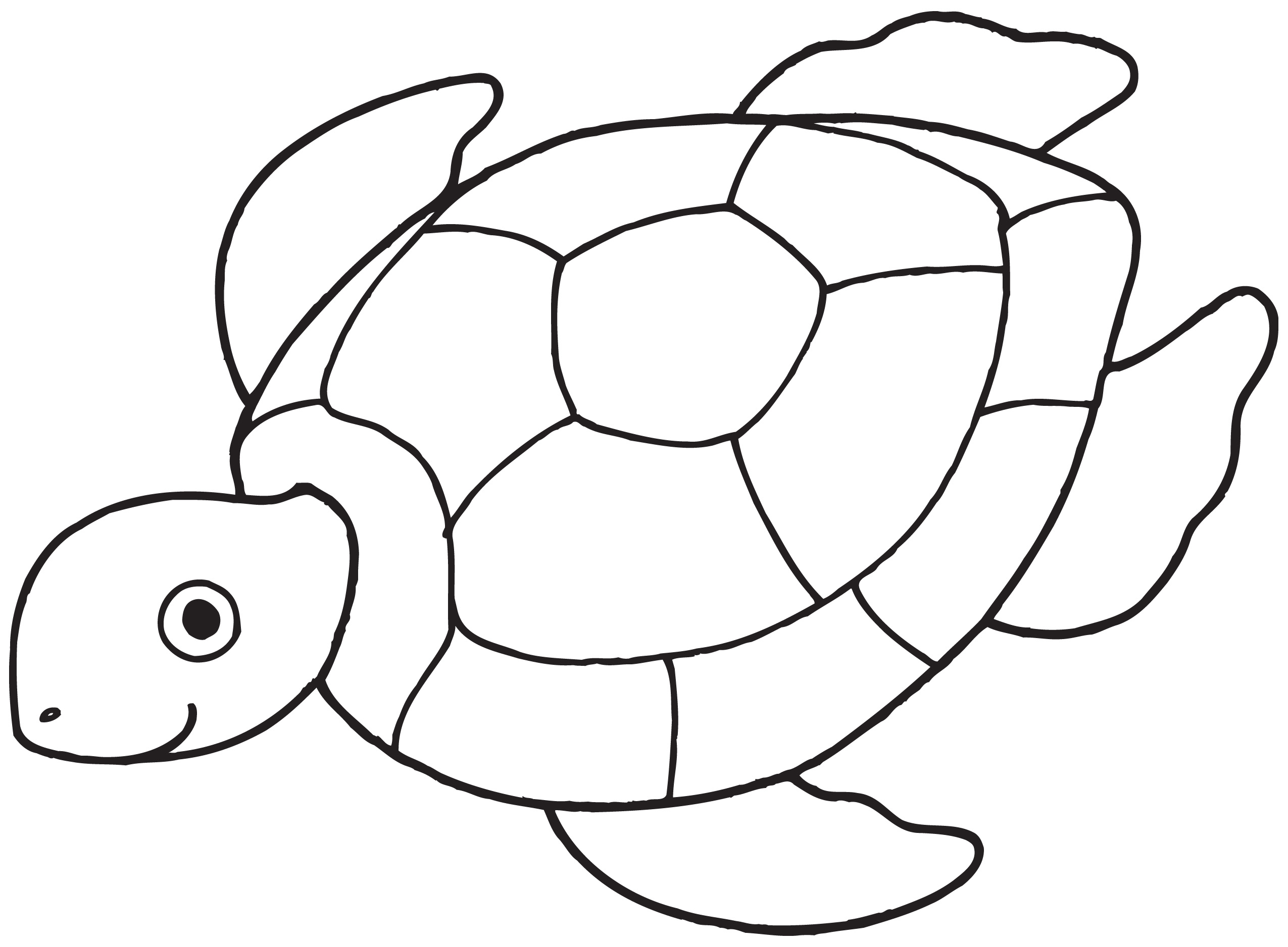 Free coloring pages under the sea - Free Printable Coloring Pages Turtles Sea Turtle Clipart Black And White Clipart Panda Free Clipart