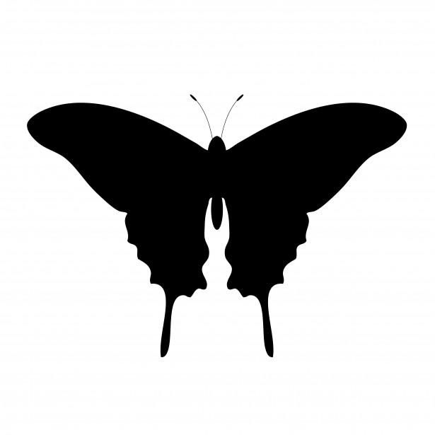 Butterfly Outline Clipart Free Stock Photo - Public Domain Pictures