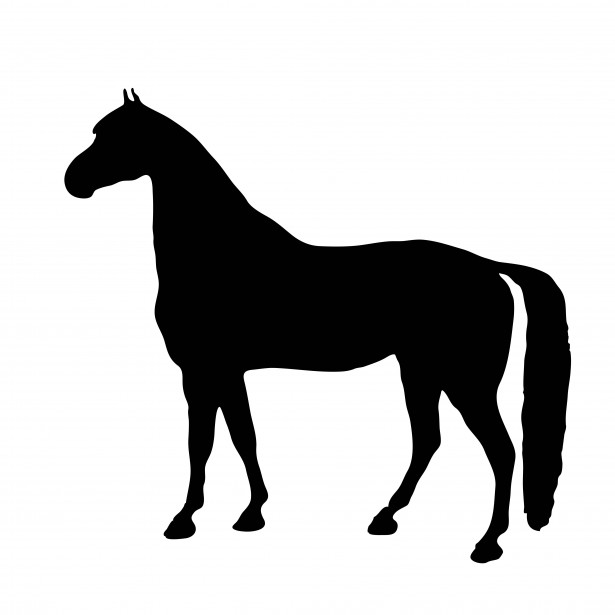 Horse Silhouette Clipart Free Stock Photo - Public Domain Pictures