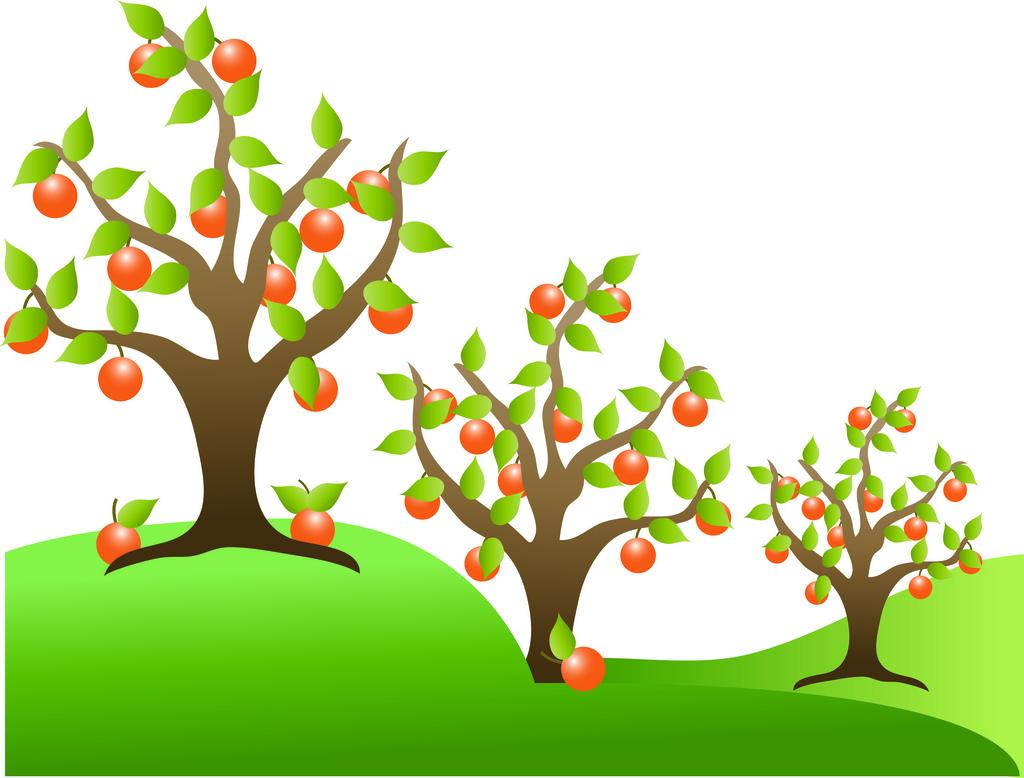Orange Tree Clipart Cliparts Co