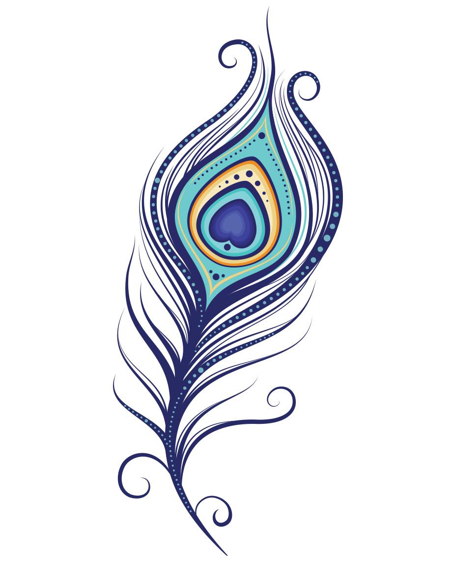 Peacock Feather  Clipartsco