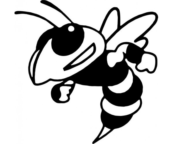 Yellow Jacket Clipart Cliparts Co Yellow Jacket Coloring Page