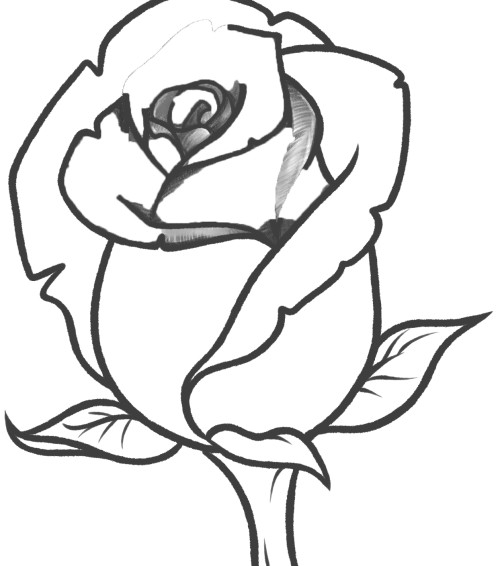 The Very Fragrant Roses Coloring Page