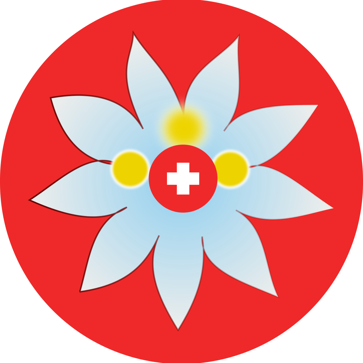Edelweiss Flower Tattoo - Cliparts.co
