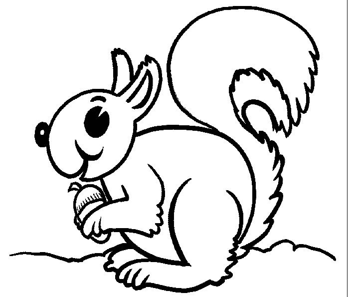 Flying Squirrel Coloring Page - Cliparts.co