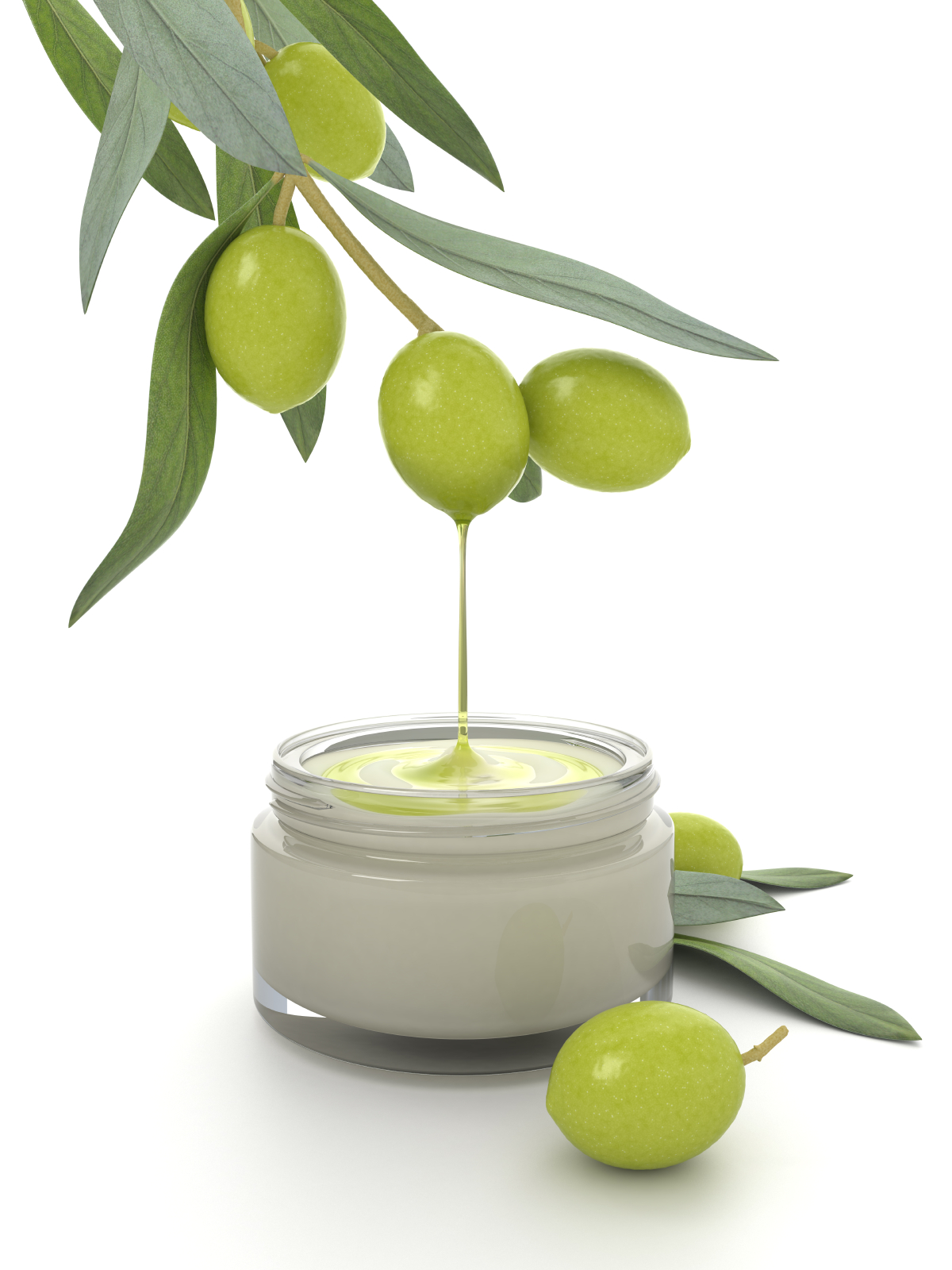 Olive - Cliparts co
