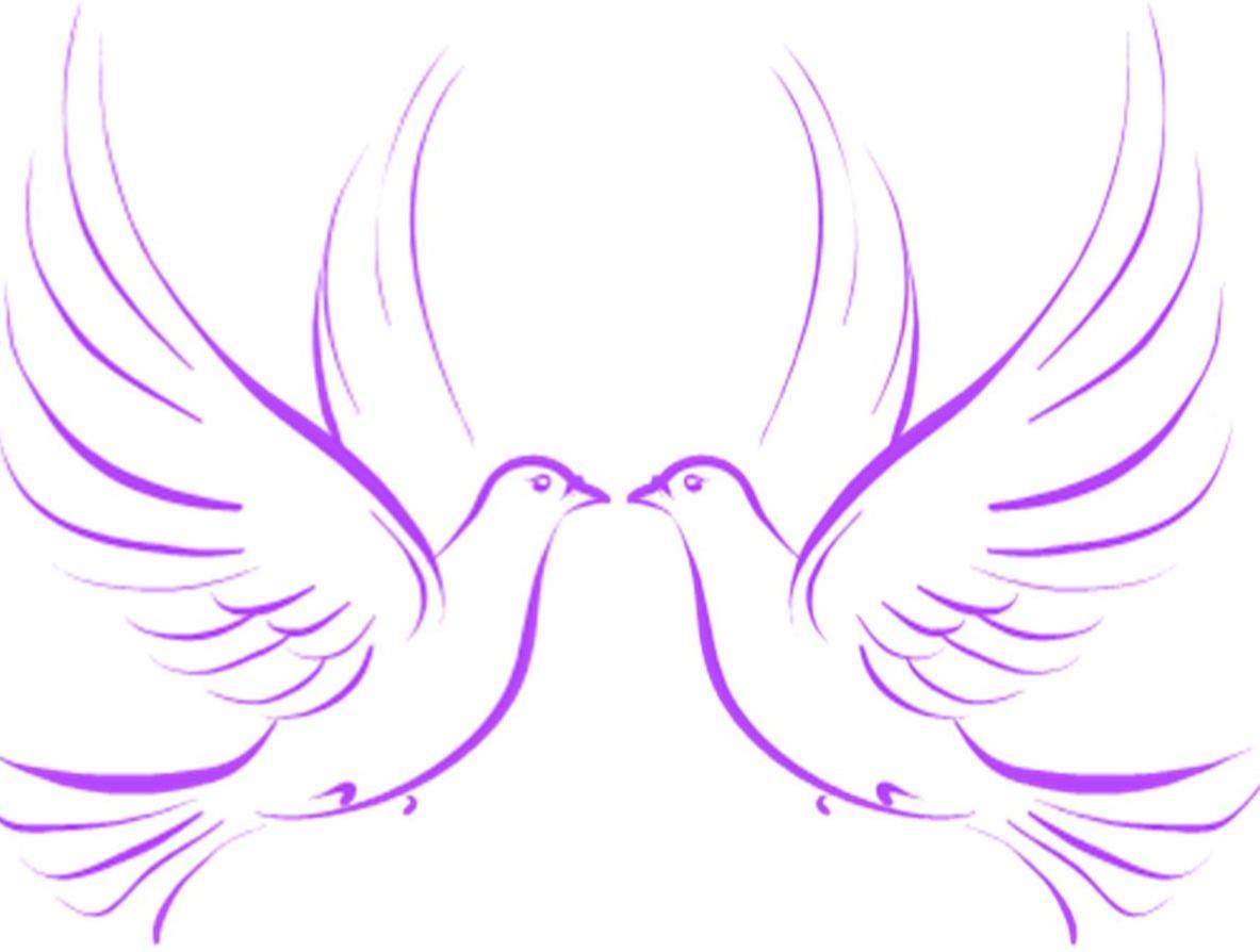 Wedding Doves image - vector clip art online, royalty free ...