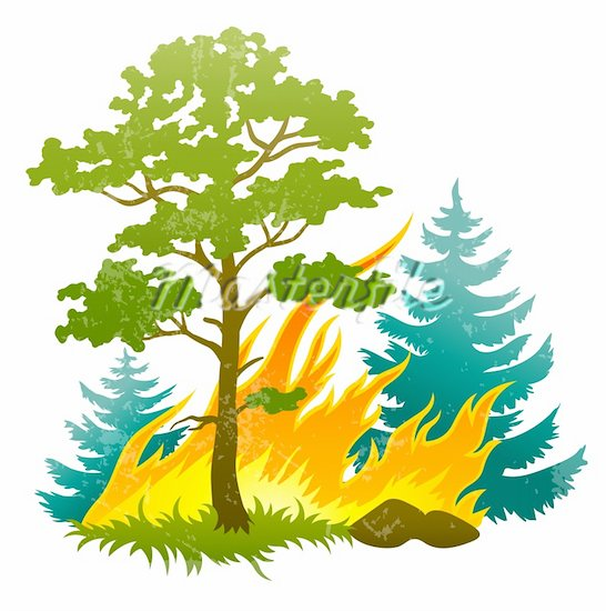 Forest Clip Art - Cliparts.co