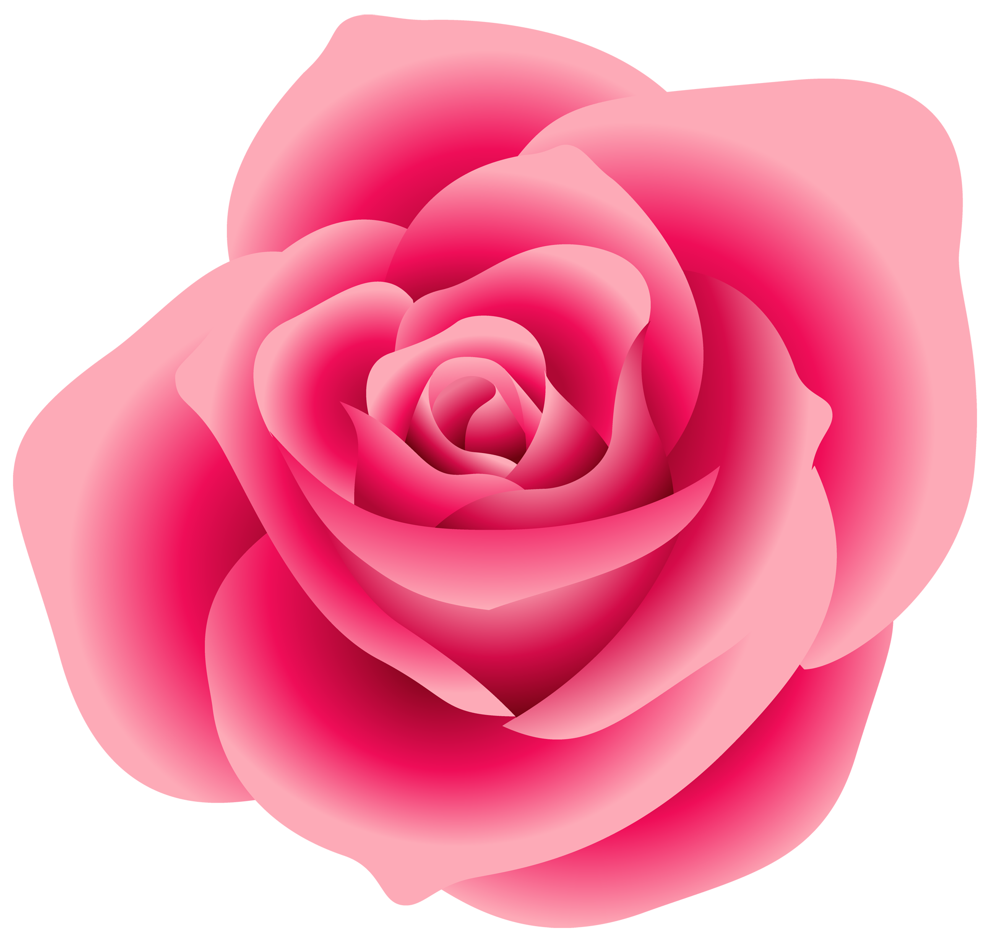 Picture Of A Pink Rose - Cliparts.co
