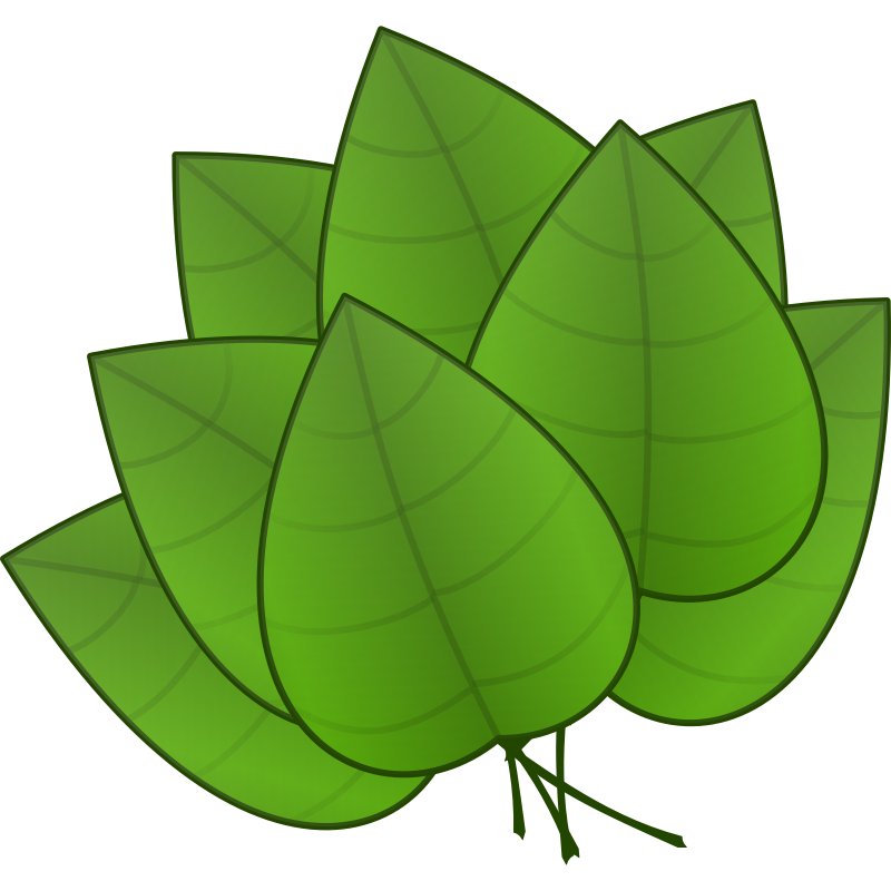 Clipart - Leaves