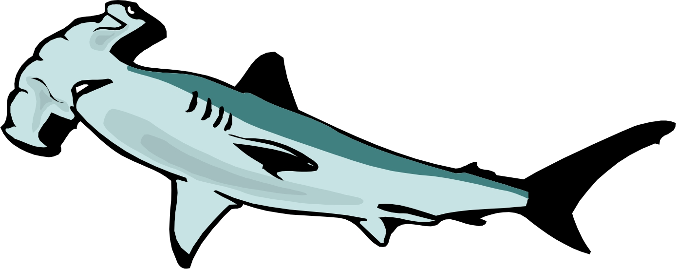 hammer shark cartoon