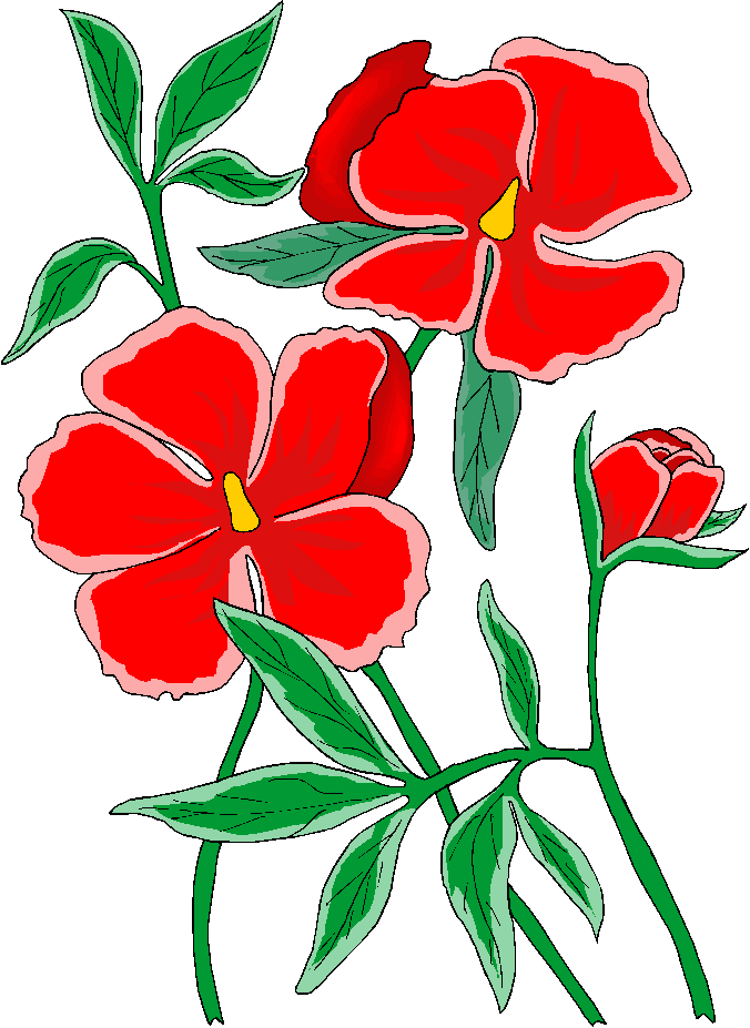 Moons Flower: Flower Clipart