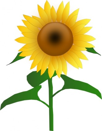Free clip art sunflower Free vector for free download (about 29 ...