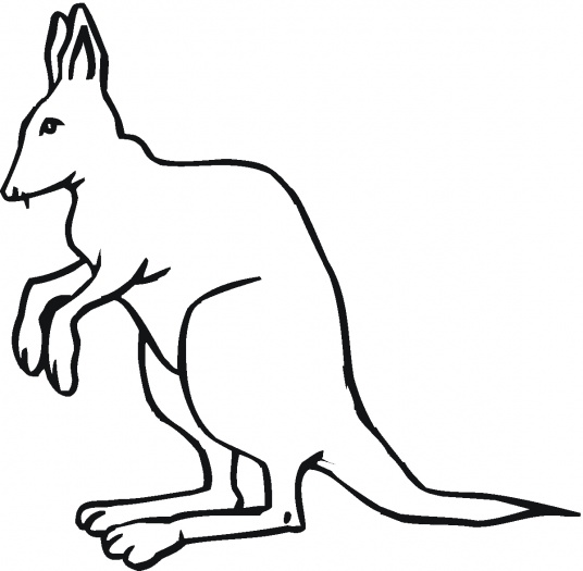 Line Drawing Kangaroo : Kangaroo outline clipart best cliparts