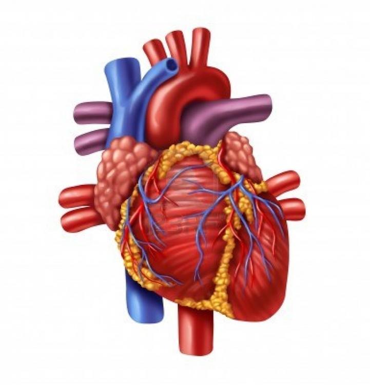 Heart disease - age doesn\'t matter