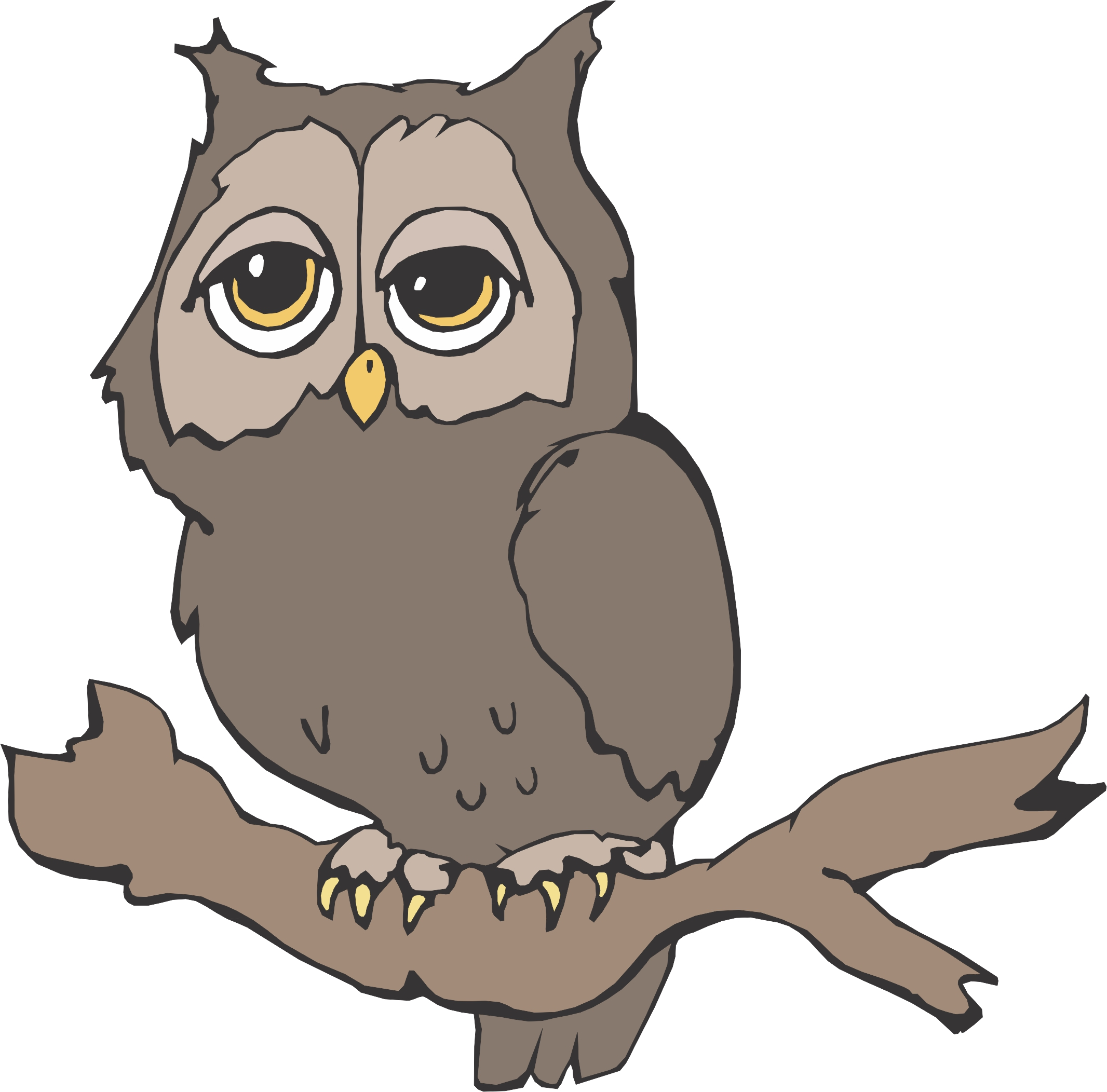 Cartoon owl for A cartoon owl