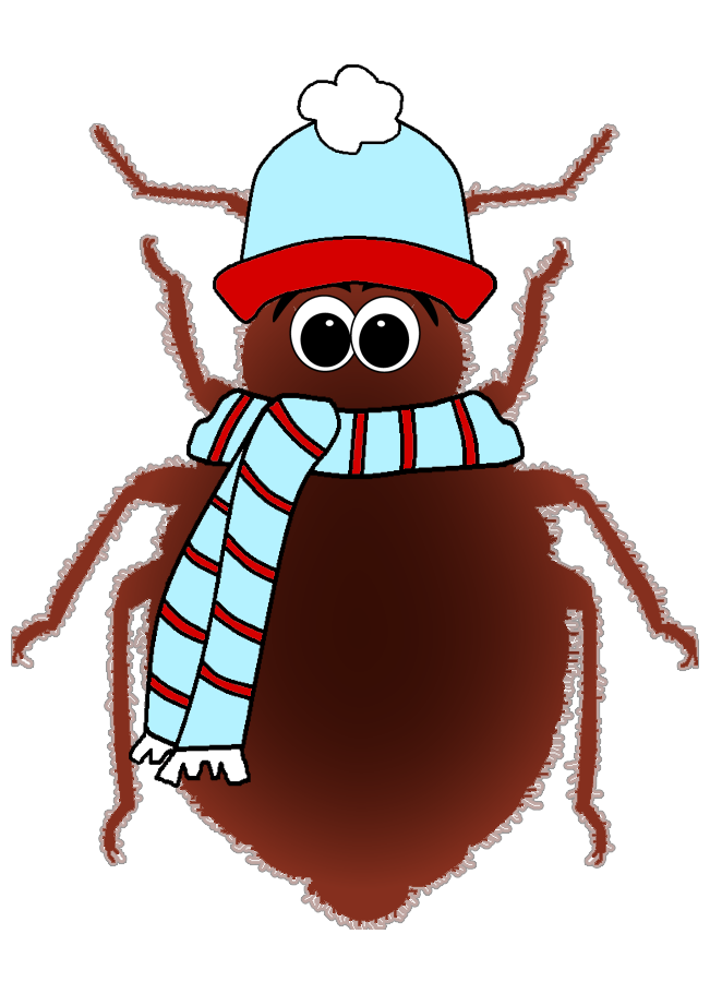Can Cold Kill Bed Bugs