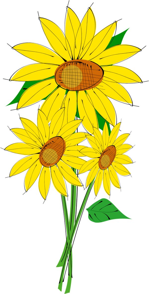 Sun Flower - vector Clip Art