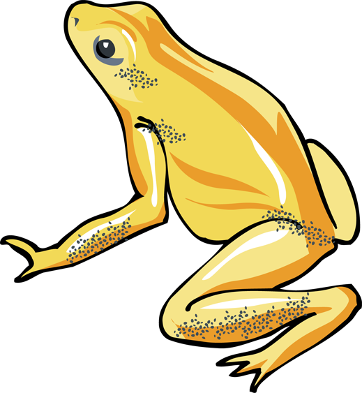 Tree Frog Clipart - ClipArt Best