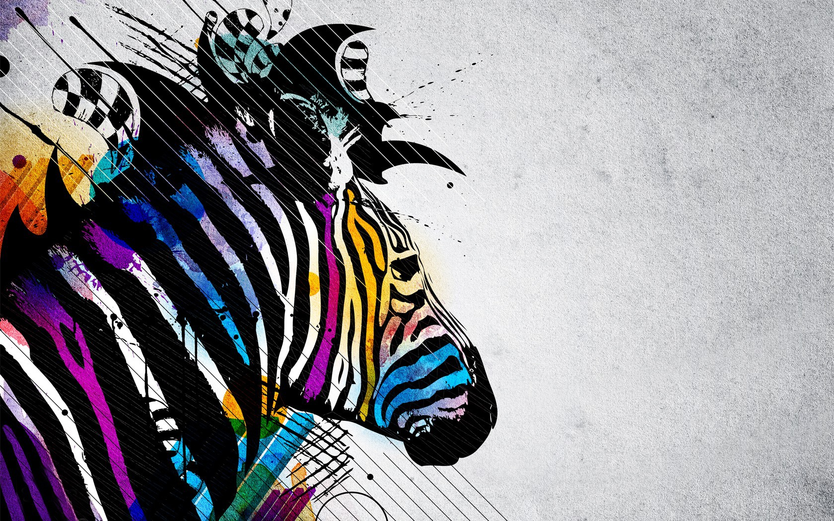 zebra soap opera and summer art