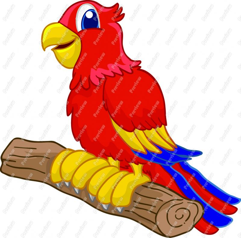 Cartoon Pictures Of Parrots - Cliparts.co