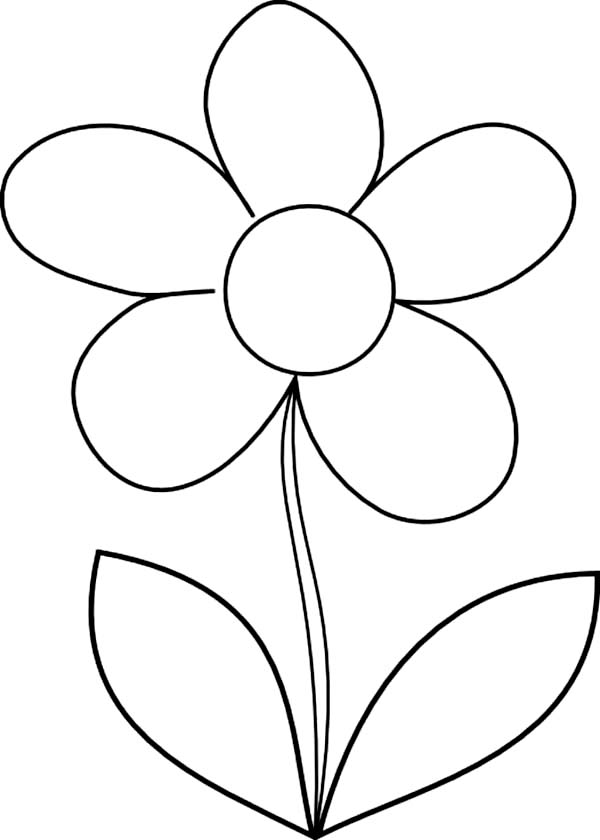 Flower drawing for How to draw a basic flower