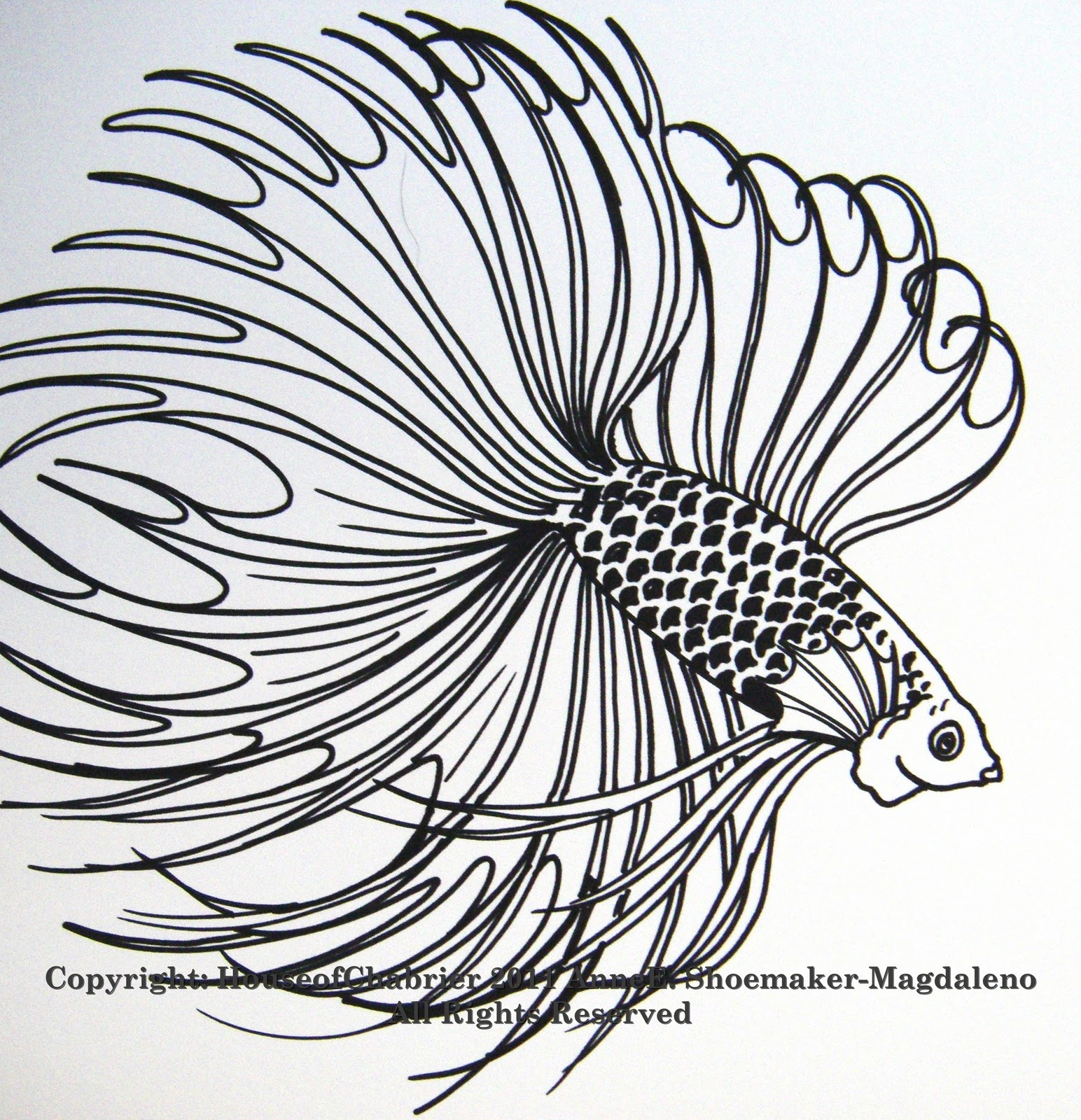 fish drawings cliparts co
