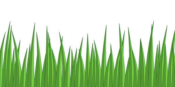 Cartoon Grass Cliparts Co